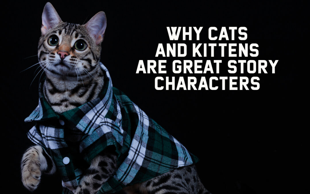 Why Cats and Kittens are Great Story Characters