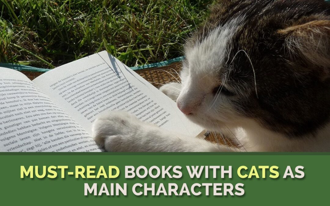 Must-Read Books with Cats as Main Characters